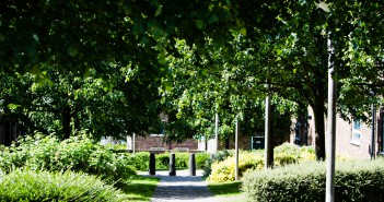 Campus- Photo by Thomas Stovell