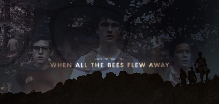 When All the Bees Flew Away: Poster