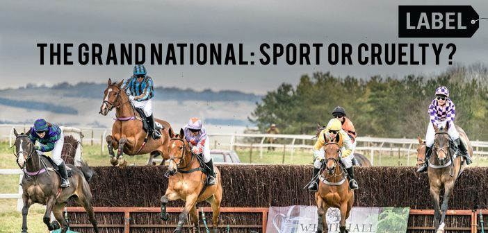 The Grand National: Sport or Cruelty?