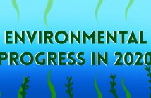 Plant leaves and the words 'Environmental Progress in 2020' on a gradient blue background